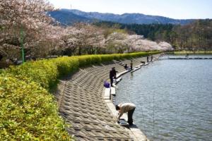 春の東山湖湖畔