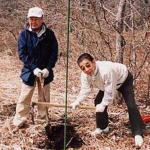 山桜の苗植